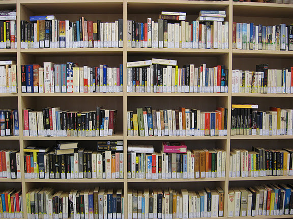 Scaffali (libri per adulti) » Rete Bibliotecaria Bresciana e